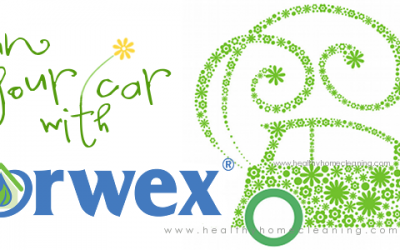Spring Clean Your Car with Norwex!