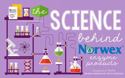 The Science Behind Enzymes & Why Norwex Uses Them