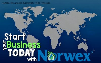 Start Your Norwex Business TODAY through Global Sponsoring!!