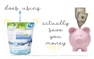 Does Norwex Laundry Detergent Save You Money?