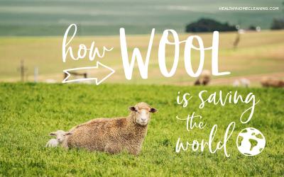How Wool is Saving the World