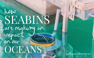 How Seabins Are Making an Impact on our Oceans