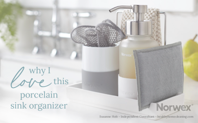 A Review of the Porcelain Sink Organizer